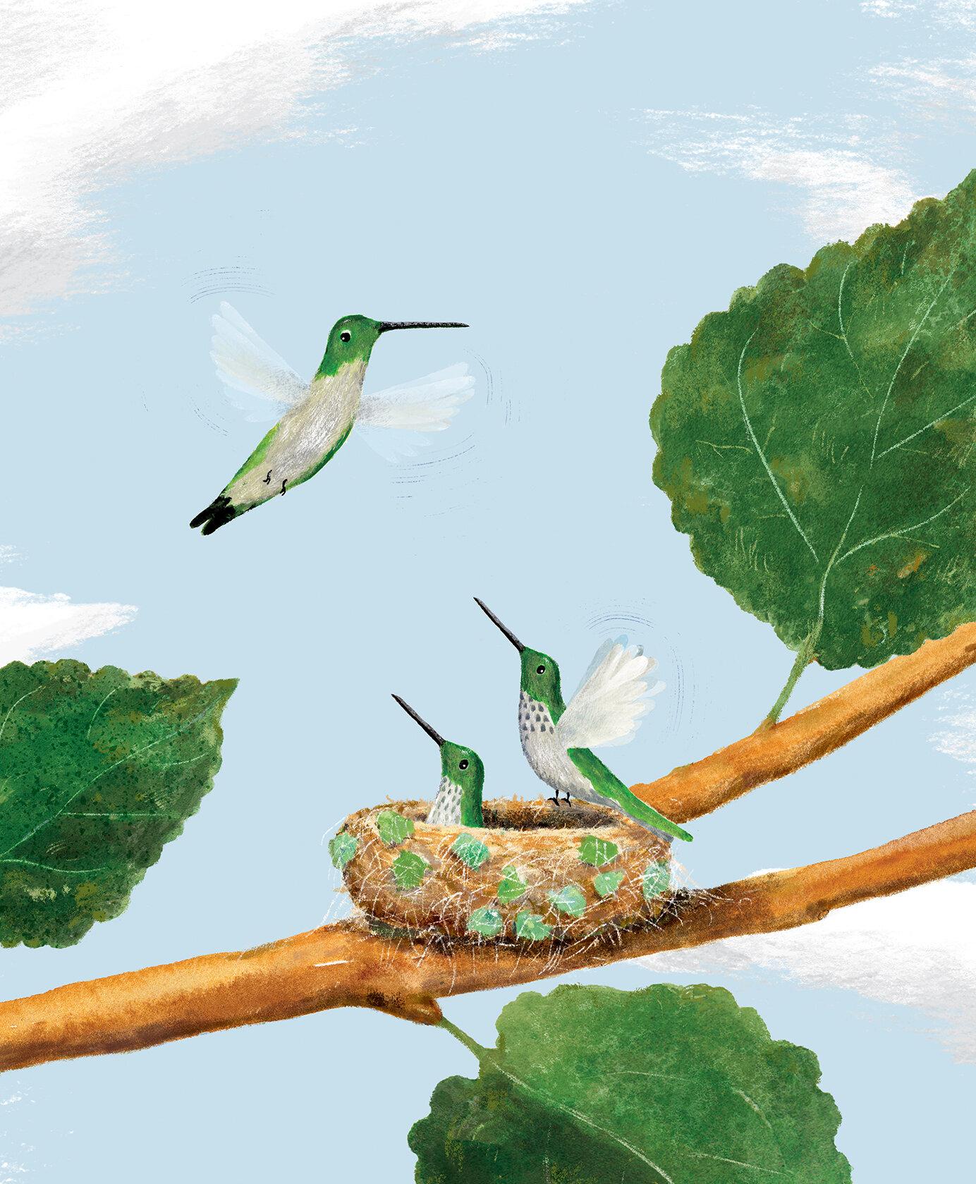 Paul Meisel-My Tiny Life by Ruby T. Hummingbird